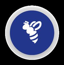 Abelles - Control i eliminació de plagues d´abelles