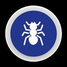 Formigues - Control i eliminació de plagues de formigues