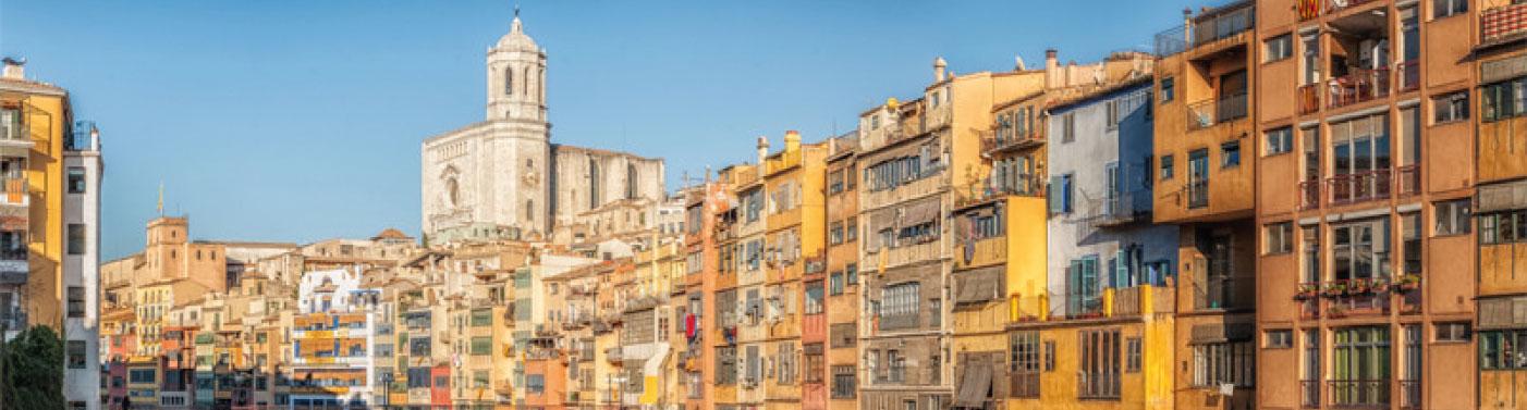 Serveis de control de plagues i fumigacions a Girona i la comarca del Gironès