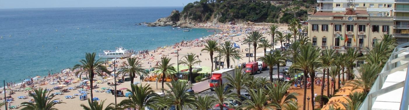 Serveis de control de plagues i fumigacions a LLoret de Mar i la comarca de La Selva