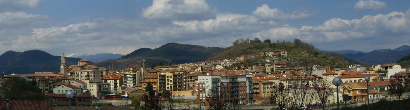 Serveis de control de plagues i fumigacions a Olot i la comarca de la Garrotxa