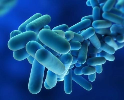 legionella - Prevenció amb Cèntric Plagues a Girona i Barcelona